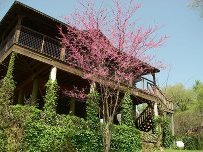 Photo for AMAZING LOG TREEHOUSE CABIN RIGHT ON THE COLORADO RIVER