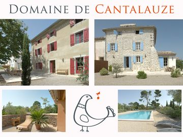 Stylish manor house and Pigeonnier with magnificent pool on picturesque vineyard
