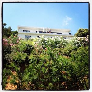 Photo for St Tropez villa with pool - panoramic sea view - 5 min walk from the beach