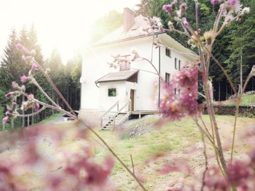 Romantic holiday home surrounded by the beautiful Bohemian Forest
