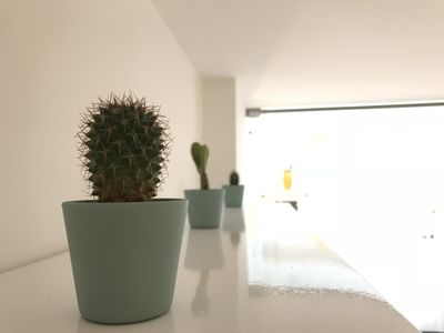 Photo for Cactus House - Catania Center