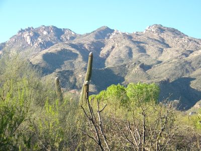 Photo for Wake up to the morning sun beaming off the Catalina Mountains!