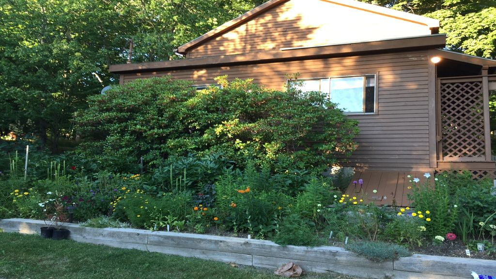 Charming Cottage Near Acadia National Park Seal Harbor Downeast And