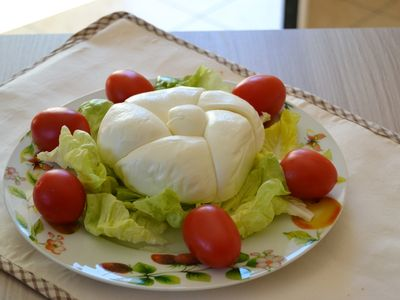 Photo for Casa Iaccarino in the homeland of mozzarella and lemons.