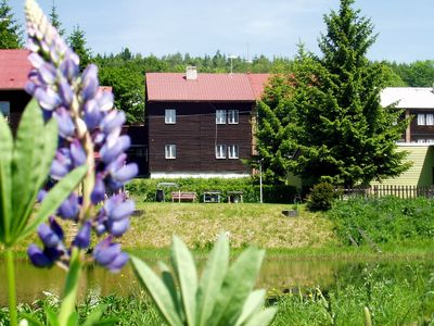 Photo for Holiday apartment in Erzgebirge with possibility of apitherapy