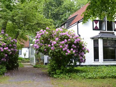 Photo for Constantia, holiday house in the center of Bergen