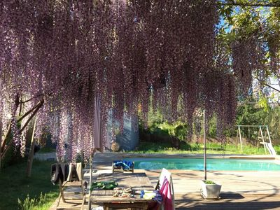 Photo for house swimming pool provence 4 bedrooms