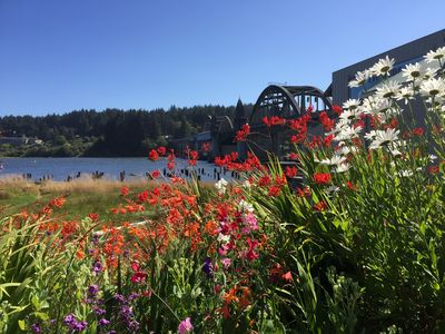 Flowers in bloom along the river