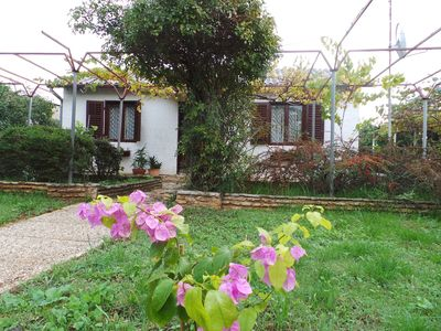 Photo for Holiday house Adriatic Sea at 300 m and with garden