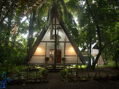 The Floating Palm Bungalow