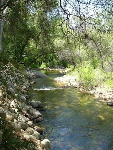 The South Fork of the Kaweah River runs behind the house