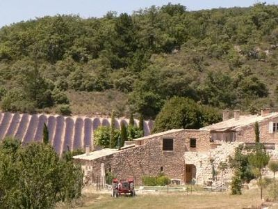 Photo for Mas provencal WALLS, on traditional land 17000 m2 with swimming + beach