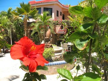 Search 3,931 holiday rentals