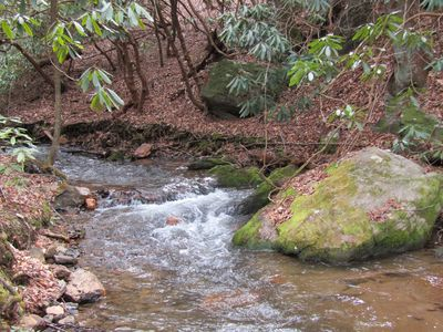 Stream bordered by National Forest with fire pit.  Complete seclusion.