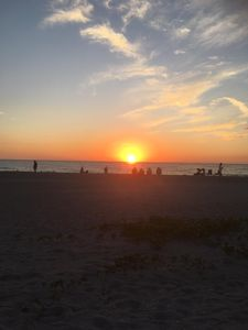 Photo for Newly renovated 1bed/bath on SIESTA KEY!!! Premier location