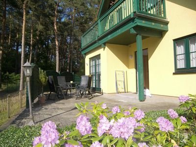 Photo for 1BR Apartment Vacation Rental in Trassenheide