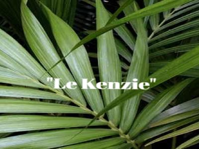 Photo for Casa Le Kenzie where a combination of hospitality, comfort and elegance meet