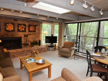Deluxe 2 bedroom condo, river views and only 5 blocks from downtown Aspen and Gondola. CE7