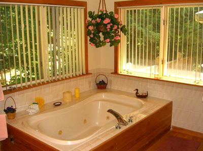 jetted tub for two with forest views