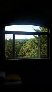 Views from all windows of the house