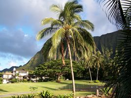 Photo for House Vacation Rental in Waimanalo, Hawaii