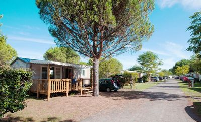 Photo for Camping Sanguinet Beach ***** - Mobil Home Grand Confort TV 3 Rooms 4/6 People