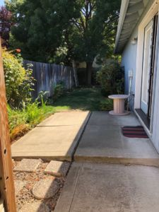 Nicely landscaped, Patio and Fence Yard