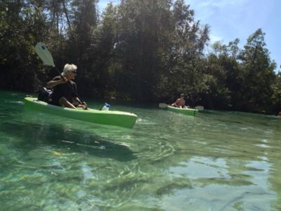 Kayaking on the Weeki Wachee River with schools of mullet in crystal clear water