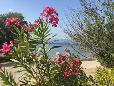 Photo for 3BR Apartment Vacation Rental in Drossia, Chalkis