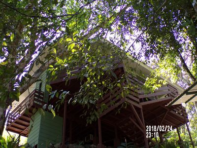 Photo for The Tree House, a home away from Home