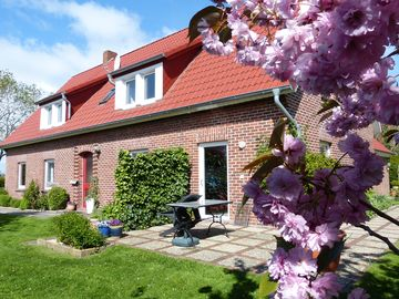 Holiday in Butjadingen surrounded by the North Sea, Jadebusen and Weser estuary