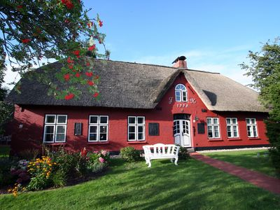 Photo for Apartment / app. for 4 guests with 70m² in Sankt Peter-Ording (76997)