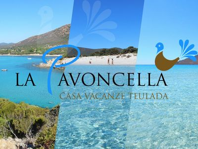 Photo for Holiday home La Pavoncella app4