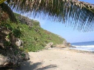 Secluded Noli Beach & Rainforest to explore
