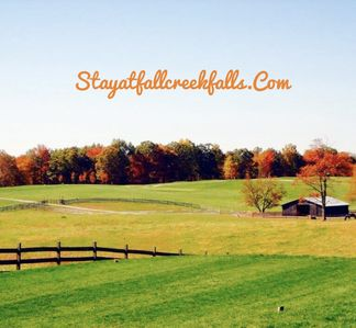 Your views in our beautiful pasture in Fall!