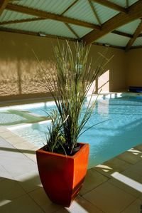 Photo for SMALL HOUSE 100 METERS FROM THE BEACH WITH POOL