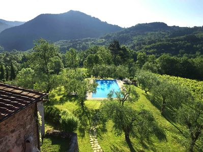 Pool, lawn, olives, vines & mountains - panoramic views