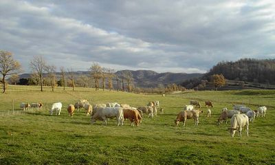 Photo for 6BR Cottage Vacation Rental in Vall d'en Bas (La), Girona