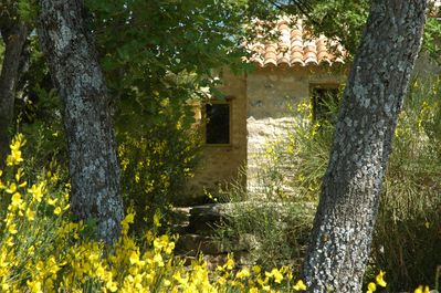 Gite in Provence in the heart of Luberon