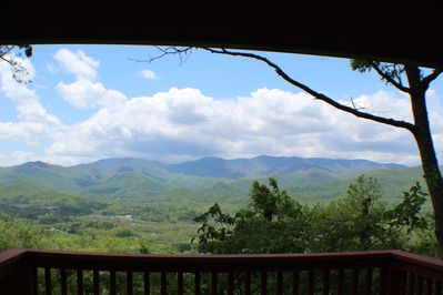 National forest view from the deck!!