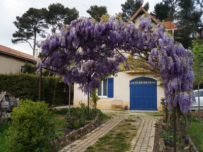 Photo for Independent apartment with garden in Provence near Casamance
