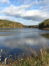 35 Acre Private Lake, One Square Mile Of Woods And Pasture.