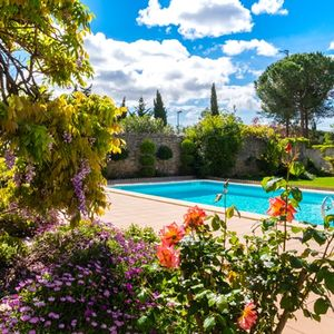 View of garden and pool