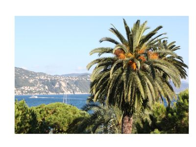 Photo for Beautiful sea views in Santa Margherita - 2 bedrooms, 2 bathrooms, Kitchen and