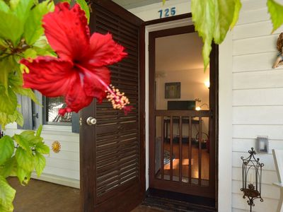 ~ SOLARIS COTTAGE ~ Enjoy Old Town Livin'. Dog friendly home!
