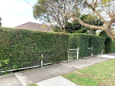 Photo for House in Chatswood, 2 bedrooms, EASY access to city and beaches