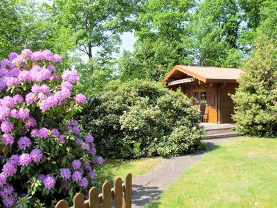 Photo for Vacation home AMSELWEG (WGT122) in Wingst - 4 persons, 1 bedrooms
