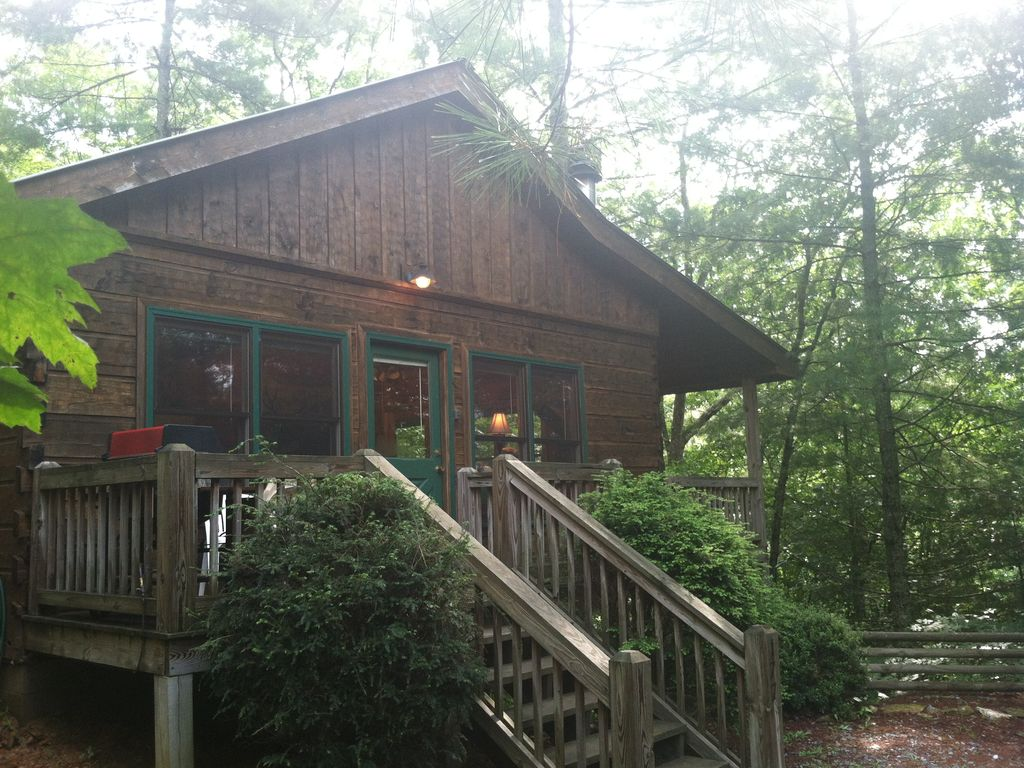 pet friendly cabin near fishing hiking ellijay blue