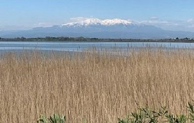 Photo for The sunsets are ours, facing the Canigou