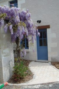 Photo for Moulin du val Orquaire cottage 8 people in Bléré in Touraine 4 km Chenonceaux